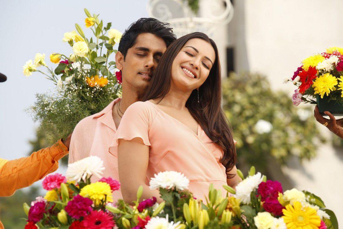 Aruvam Movie Siddharth Catherine Tresa Photos (2)